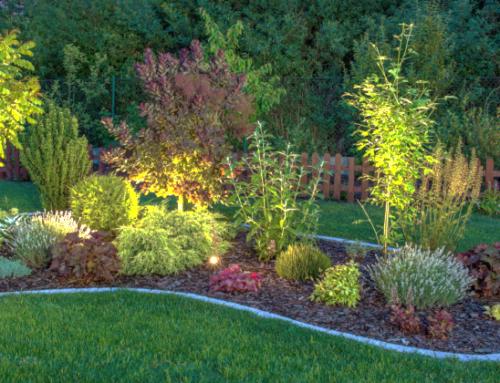 Brighten Your Garden at Night